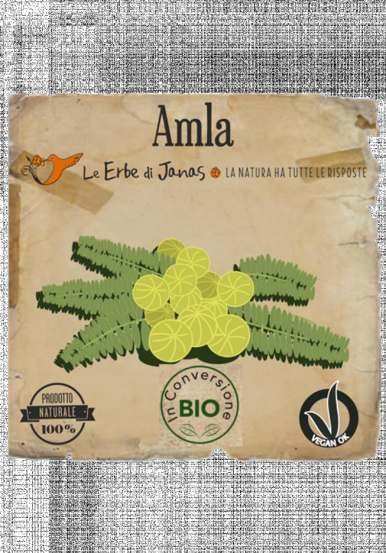 Amla 500x717