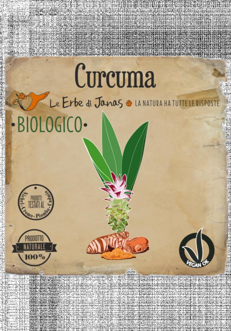 Curcuma rd 500x717